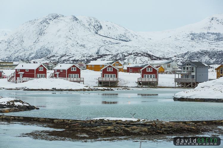 Maisons au bord d'un fjord