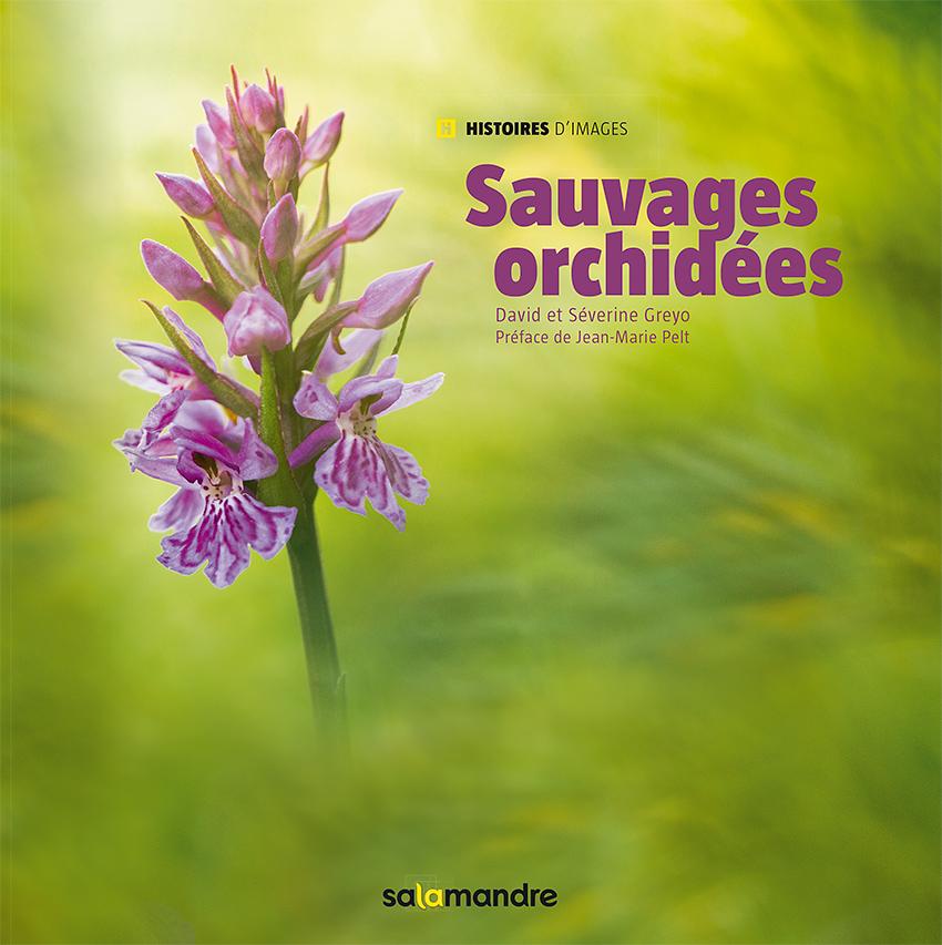 Sauvages Orchidées