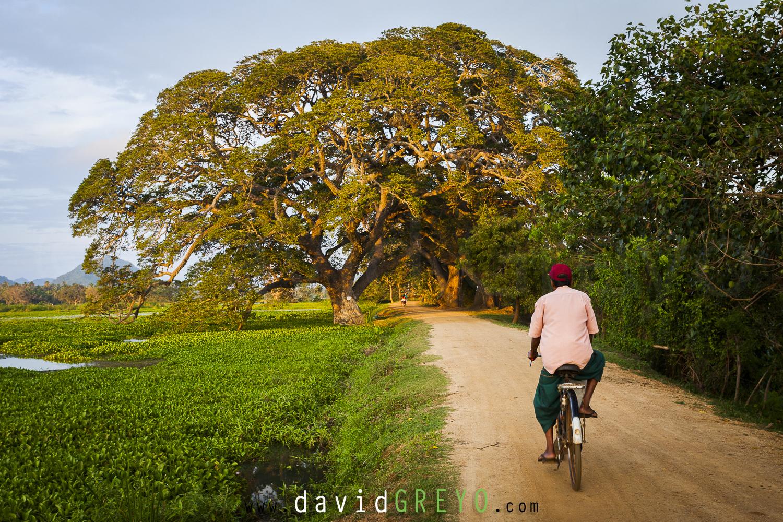 Vélo sur la digue de l'étang