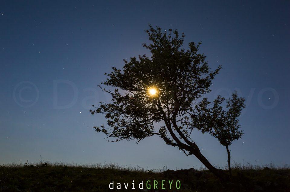 Semaine 27 : lever de lune