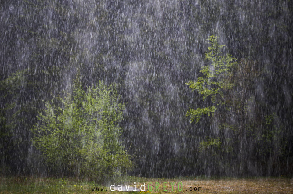 Semaine 19 : orage de grêle