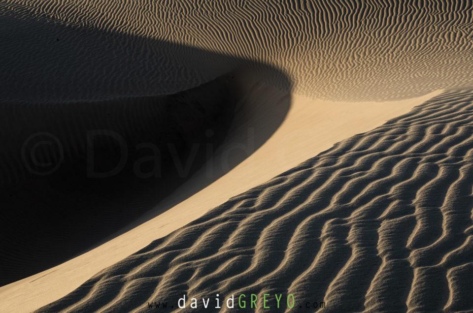 Semaine 7 : désert