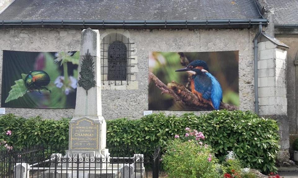 Exposition à Channay-sur-Lathan