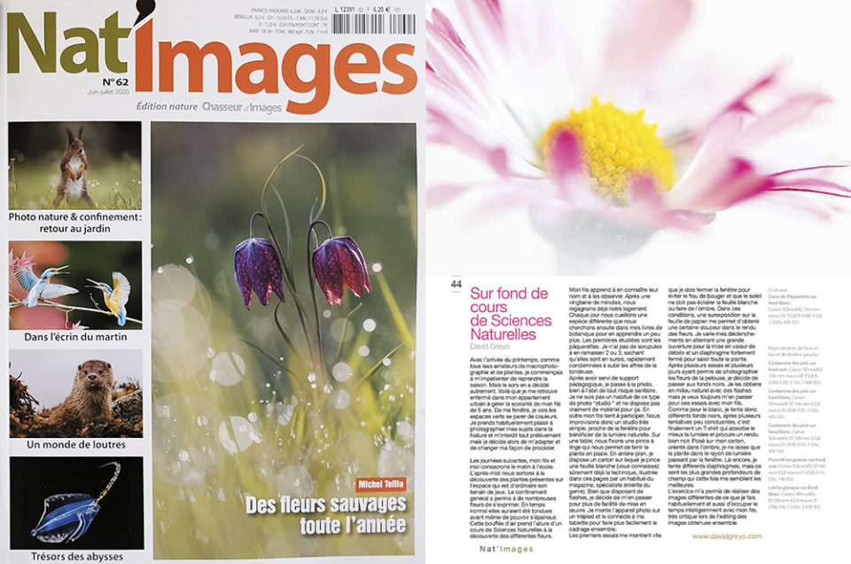 Nat'images n°62